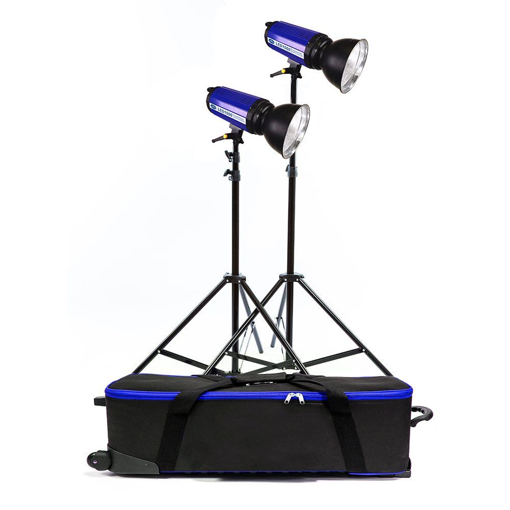 savage 2000 watt location light kit