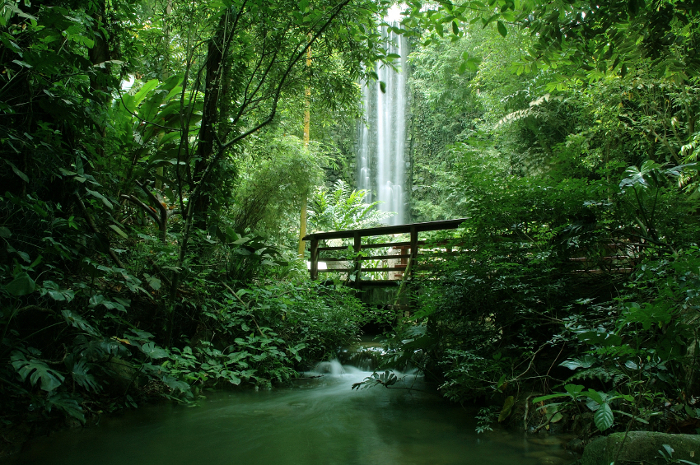 green-landscape-with-waterfall