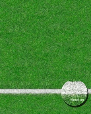 Grass Sports Field Floor Drop Image 1