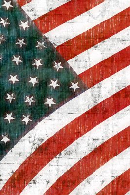 American Flag Printed Vinyl Backdrop