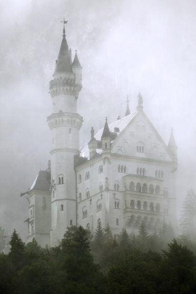 Castle in the Fog Printed Vinyl Backdrop