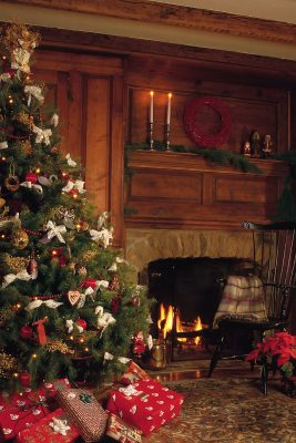 Cozy Holiday Fireplace Printed Vinyl Backdrop
