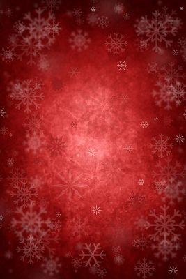 Crimson & Snowflakes Printed Vinyl Backdrop