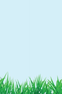 Spring Grass Printed Vinyl Backdrop