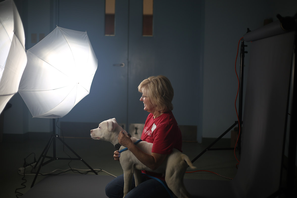 How Savage Backdrops and Light Kits are Helping to Save the Lives of Shelter Animals