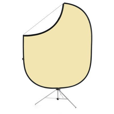Cream/White Collapsible Backdrop
